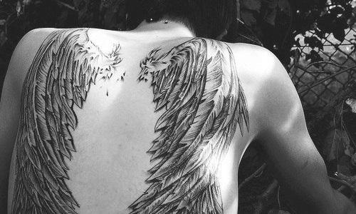 тату крылья 2